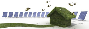How to reduce your home's environmental impact