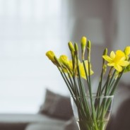 How to get the property you want this spring